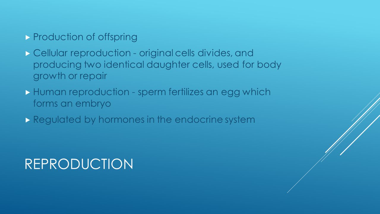 Reproduction Production of offspring