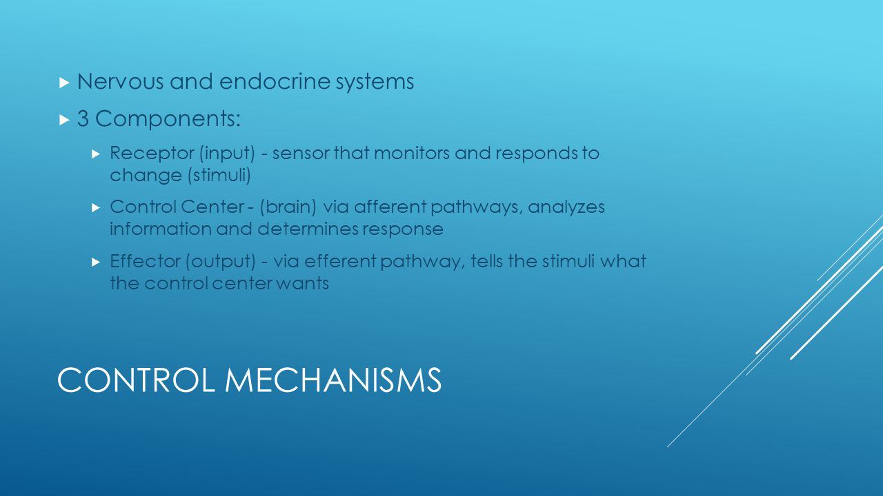 Control Mechanisms Nervous and endocrine systems 3 Components: