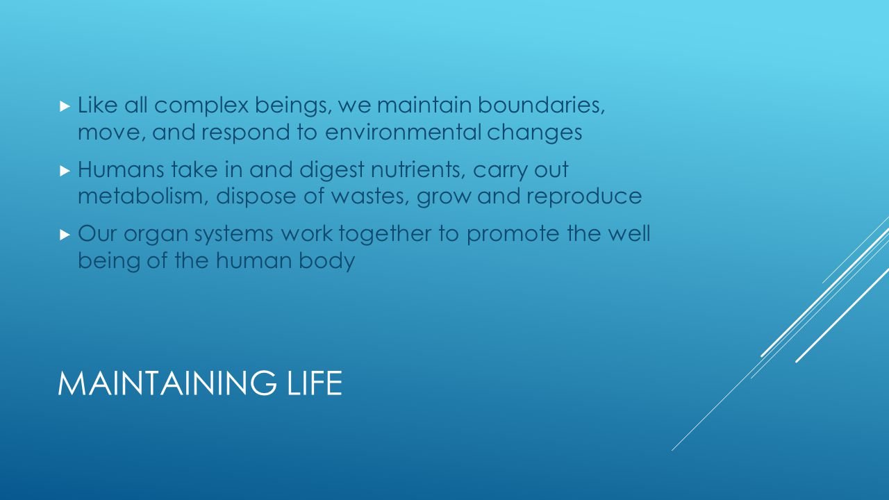 Like all complex beings, we maintain boundaries, move, and respond to environmental changes