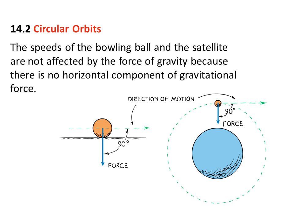 14.2 Circular Orbits