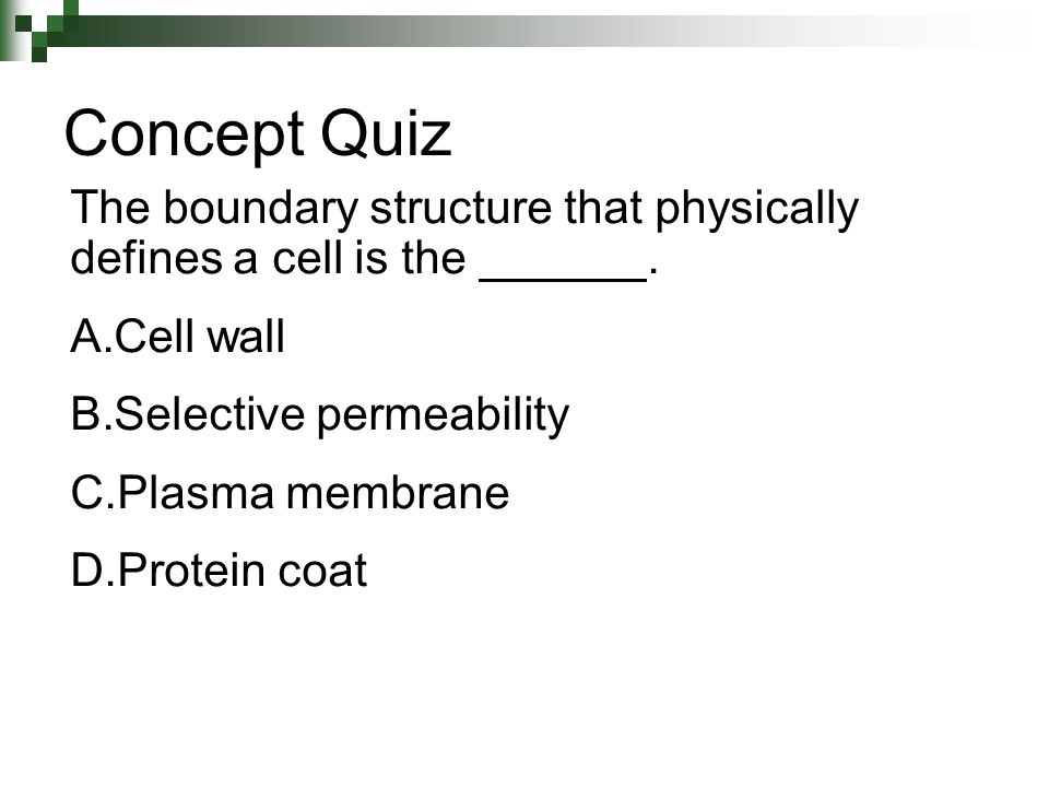 Concept Quiz The boundary structure that physically defines a cell is the . Cell wall.