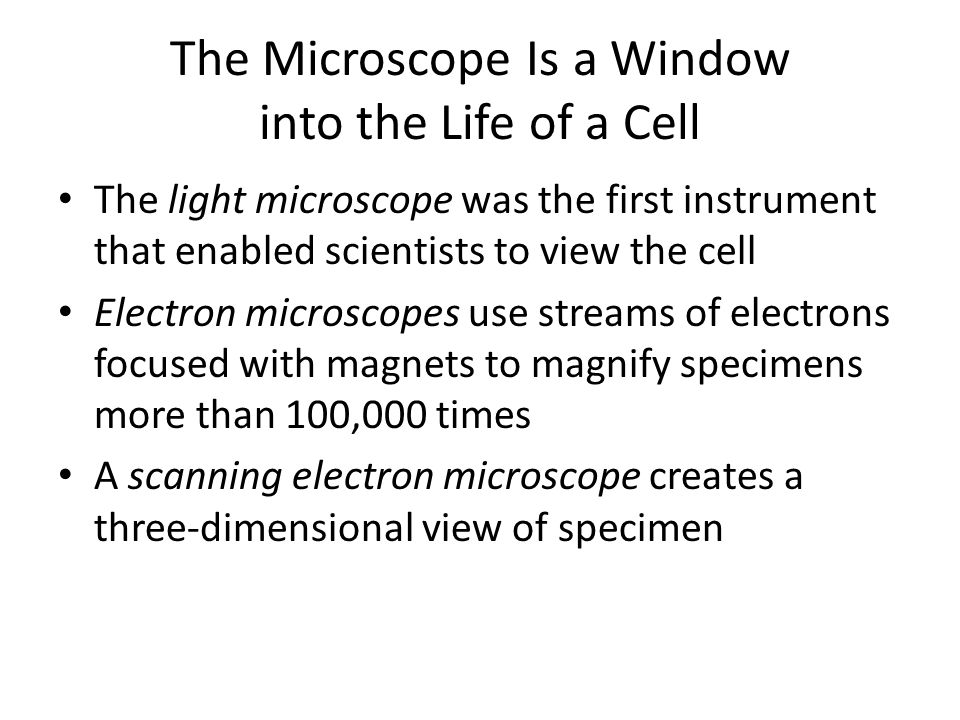The Microscope Is a Window into the Life of a Cell