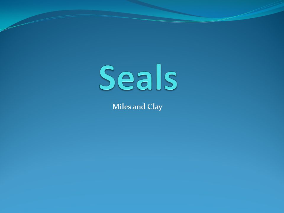 Seals Miles and Clay