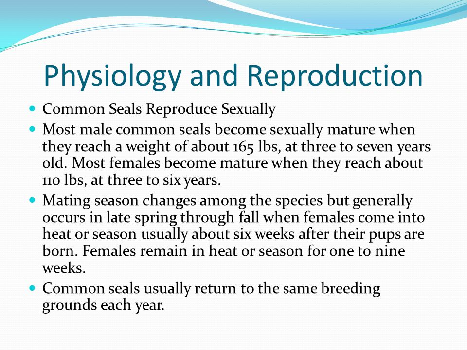 Physiology and Reproduction