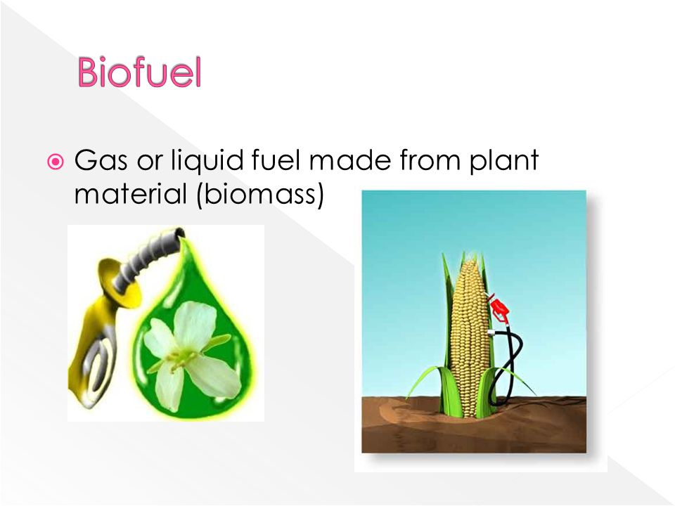 Biofuel Gas or liquid fuel made from plant material (biomass)