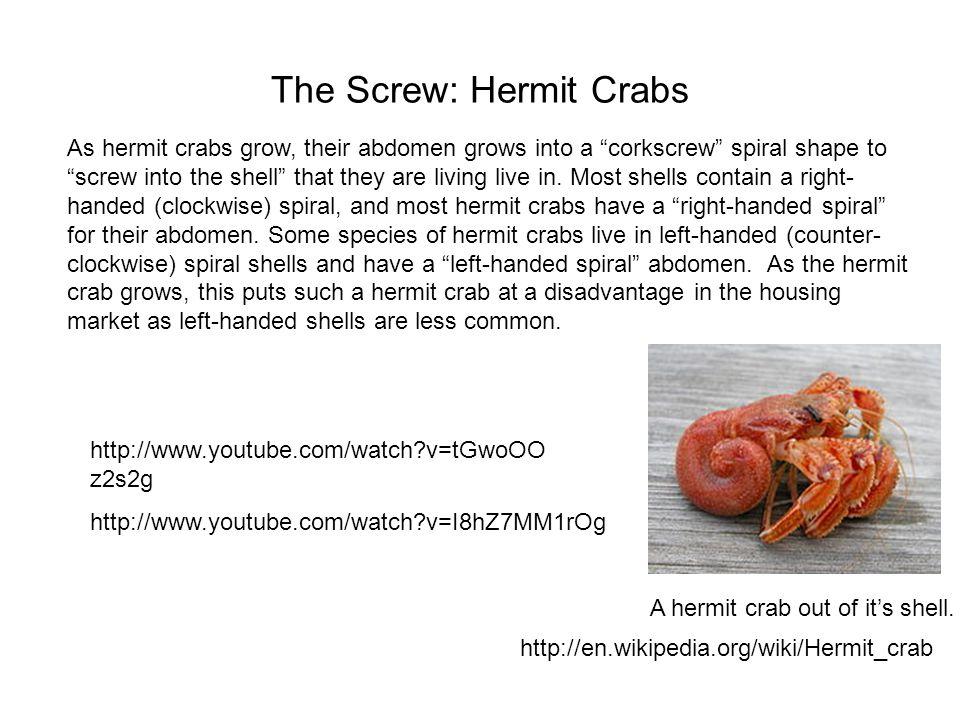 The Screw: Hermit Crabs