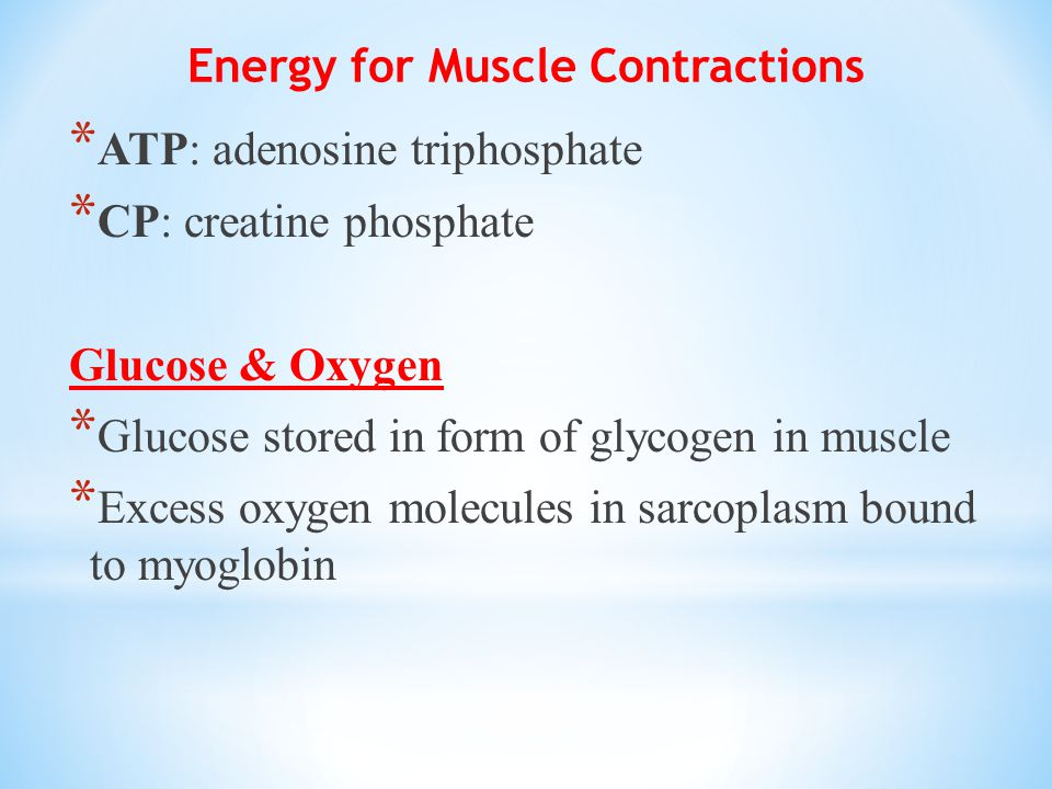 Energy for Muscle Contractions