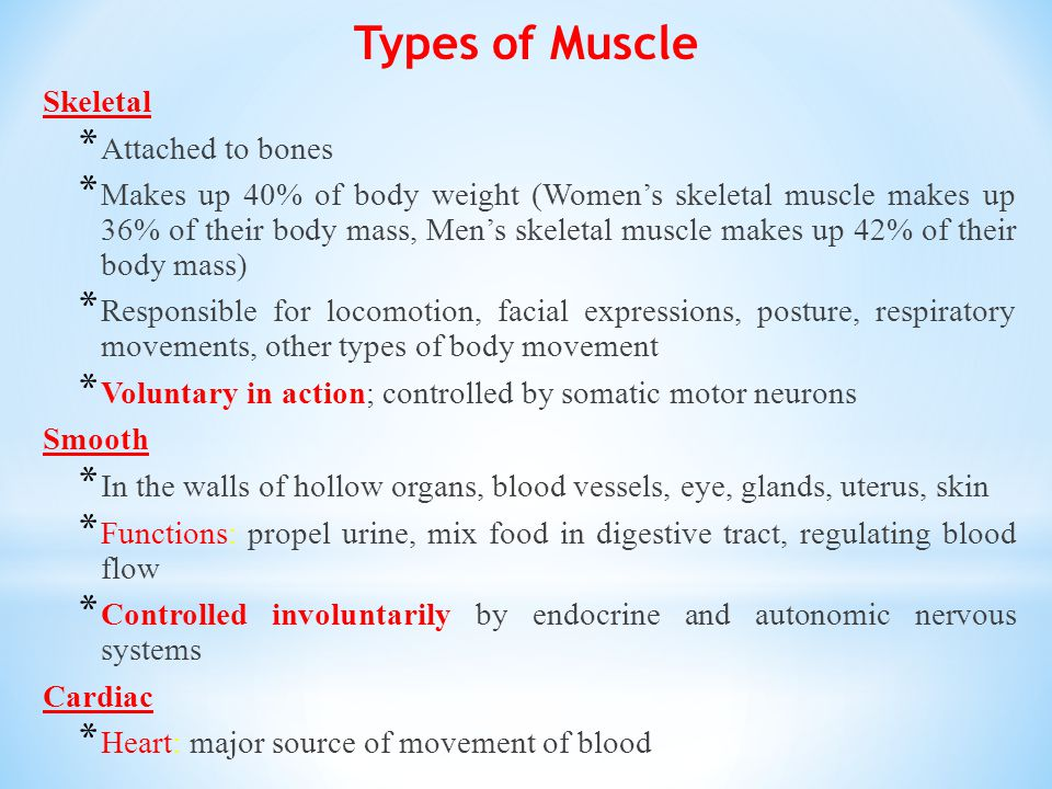 Types of Muscle Skeletal Attached to bones