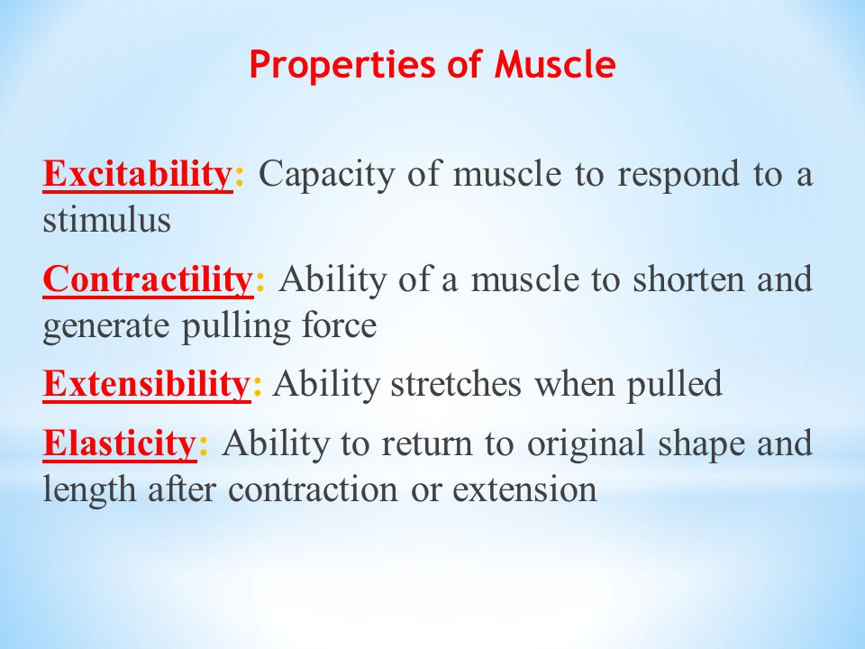 Properties of Muscle