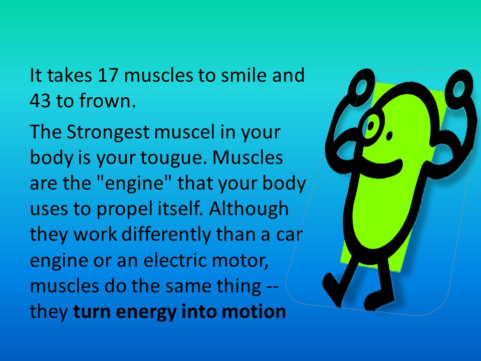 It takes 17 muscles to smile and 43 to frown.