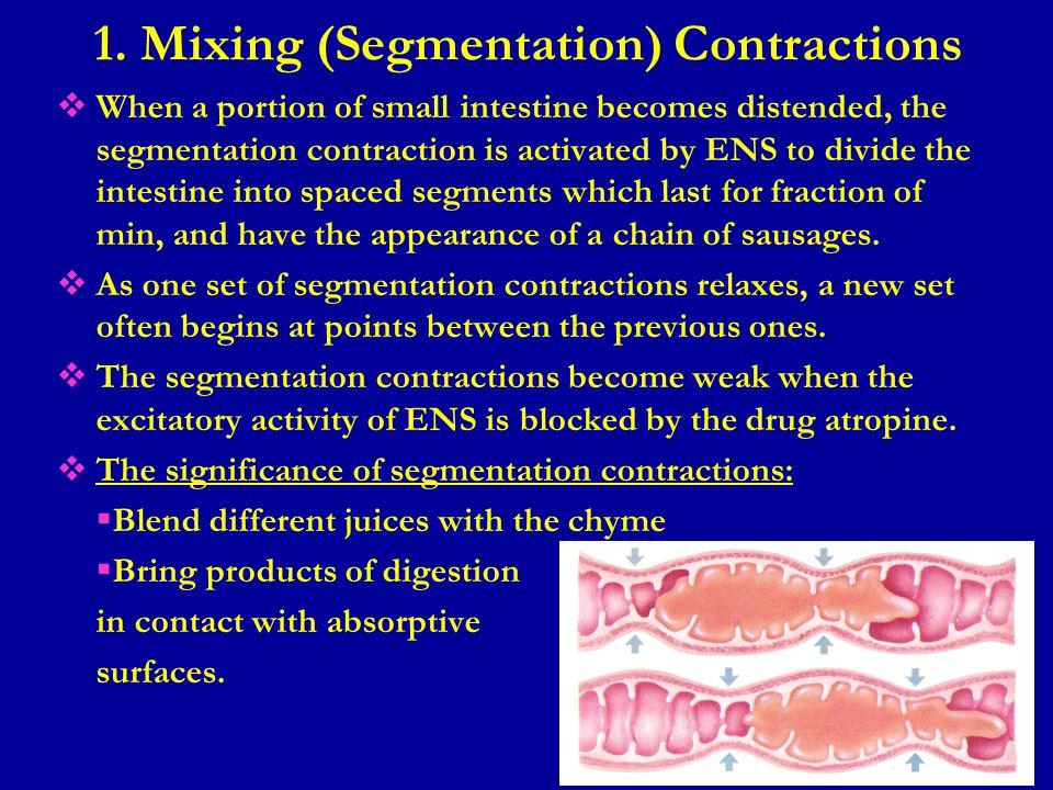 1. Mixing (Segmentation) Contractions