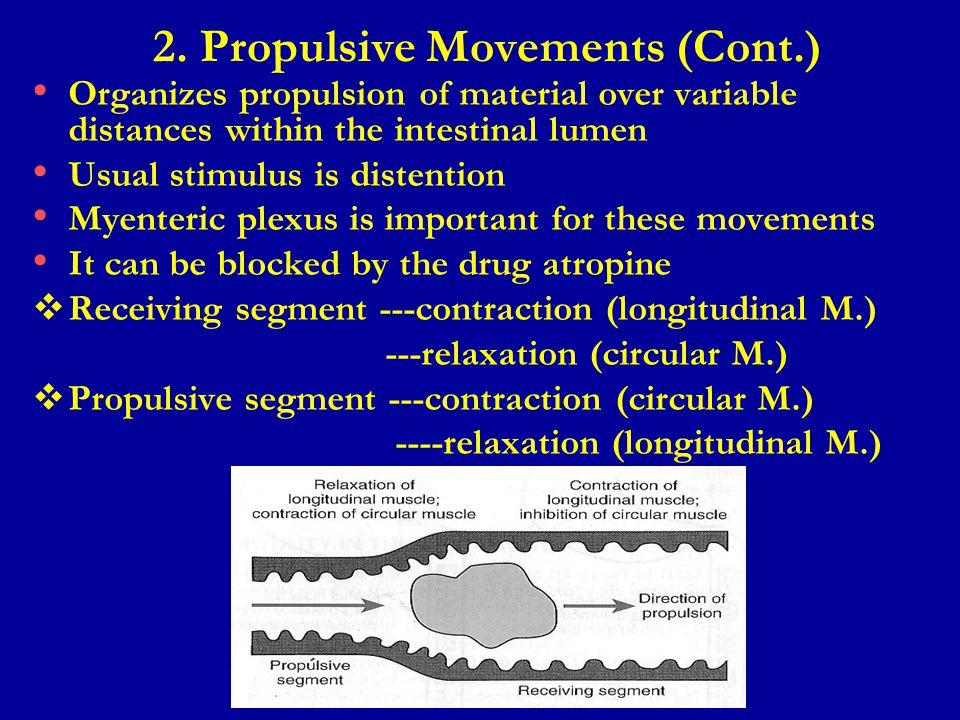 2. Propulsive Movements (Cont.)