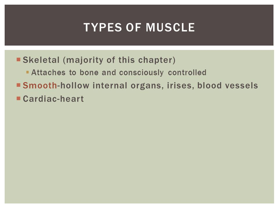 Types of muscle Skeletal (majority of this chapter)