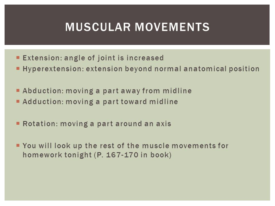 Muscular movements Extension: angle of joint is increased