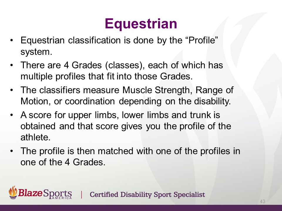 Equestrian Equestrian classification is done by the Profile system.