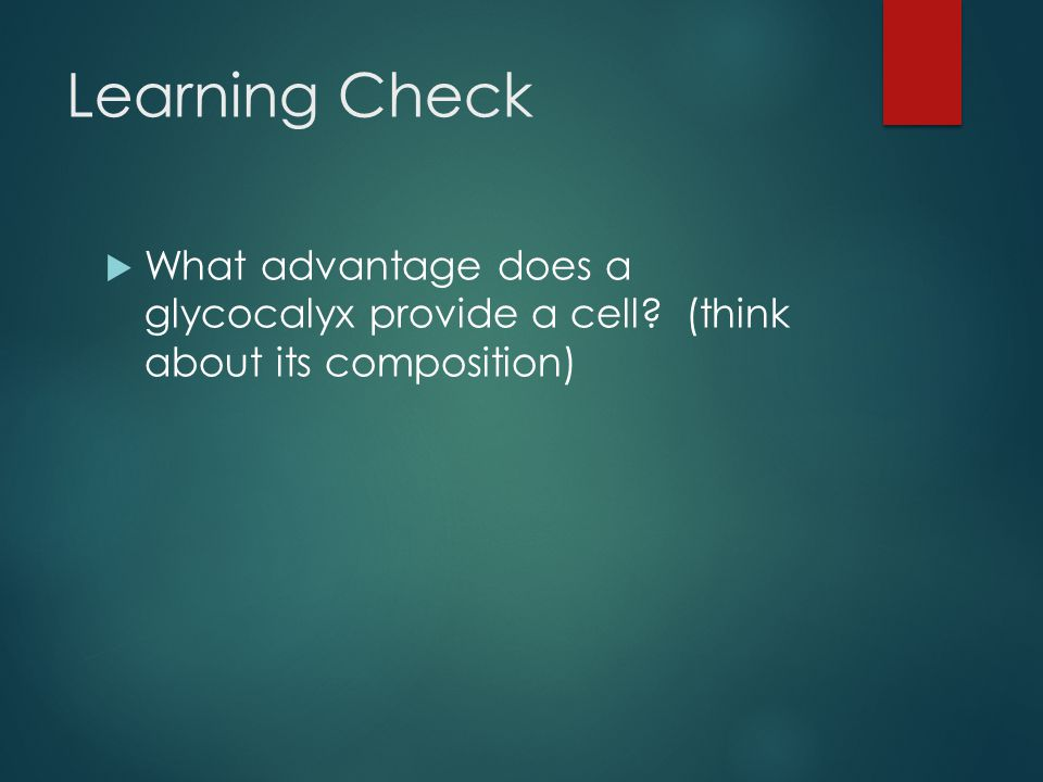 Learning Check What advantage does a glycocalyx provide a cell (think about its composition)