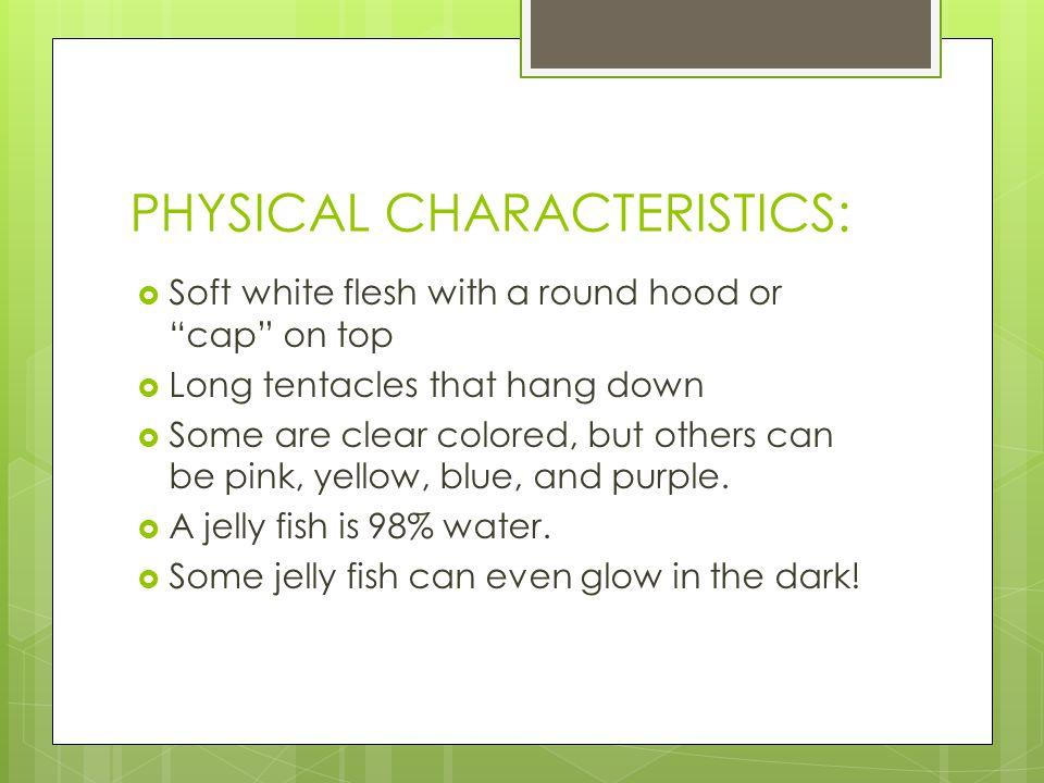 PHYSICAL CHARACTERISTICS: