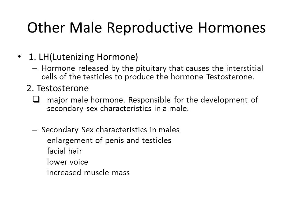 Other Male Reproductive Hormones