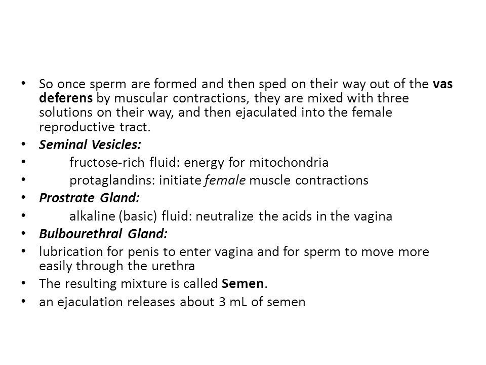 So once sperm are formed and then sped on their way out of the vas deferens by muscular contractions, they are mixed with three solutions on their way, and then ejaculated into the female reproductive tract.