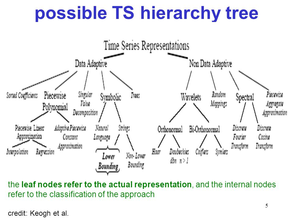 possible TS hierarchy tree
