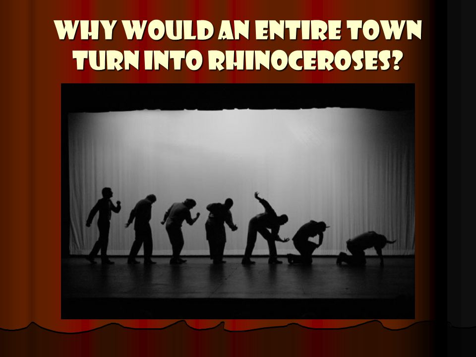 WHY WOULD AN ENTIRE TOWN TURN INTO RHINOCEROSES