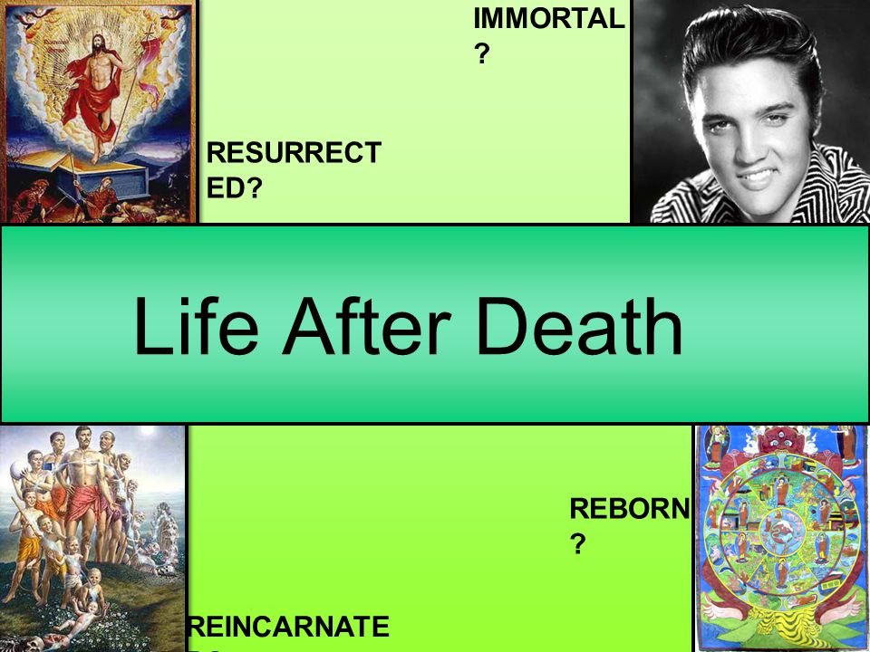 IMMORTAL RESURRECT ED Life After Death REBORN REINCARNATE D