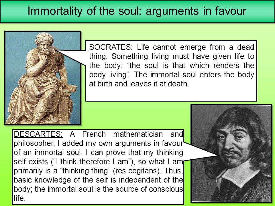 Immortality of the soul: arguments in favour