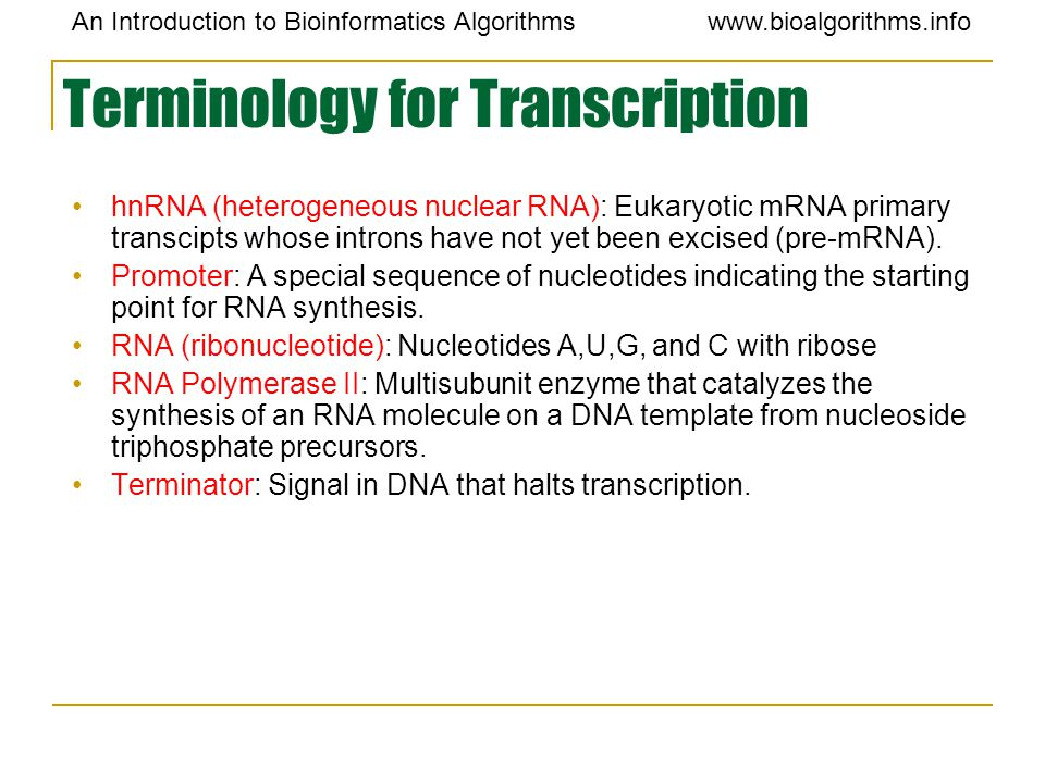 Terminology for Transcription