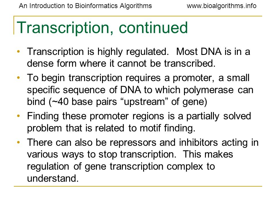Transcription, continued