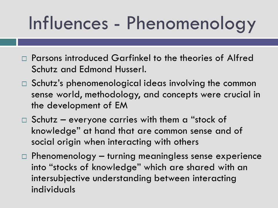 Influences - Phenomenology