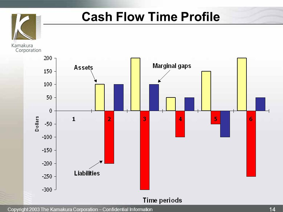 Cash Flow Time Profile