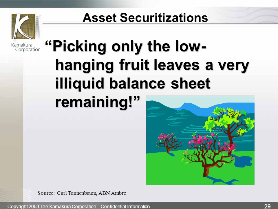 Asset Securitizations