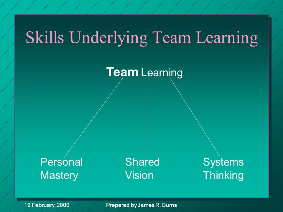 Skills Underlying Team Learning