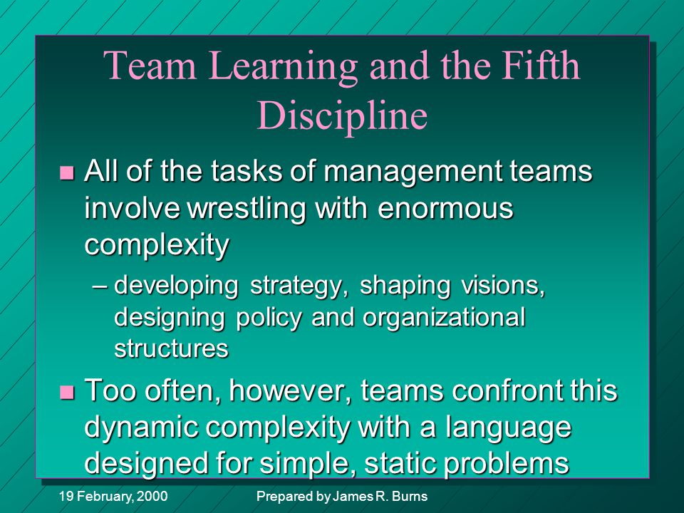 Team Learning and the Fifth Discipline