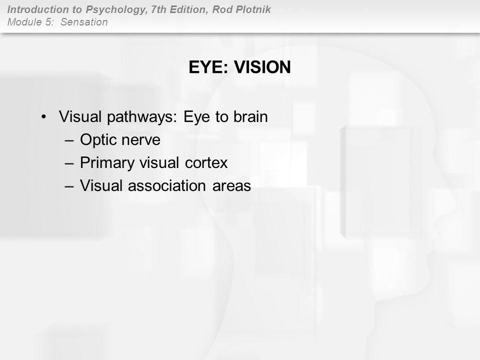 EYE: VISION Visual pathways: Eye to brain Optic nerve