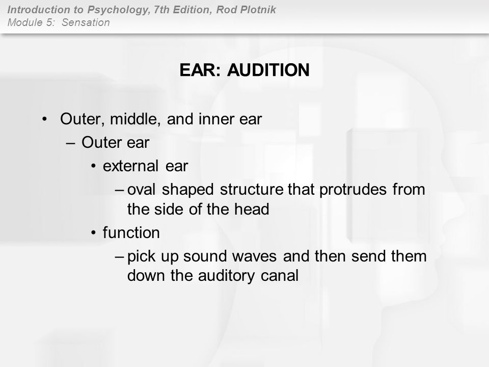 EAR: AUDITION Outer, middle, and inner ear Outer ear external ear