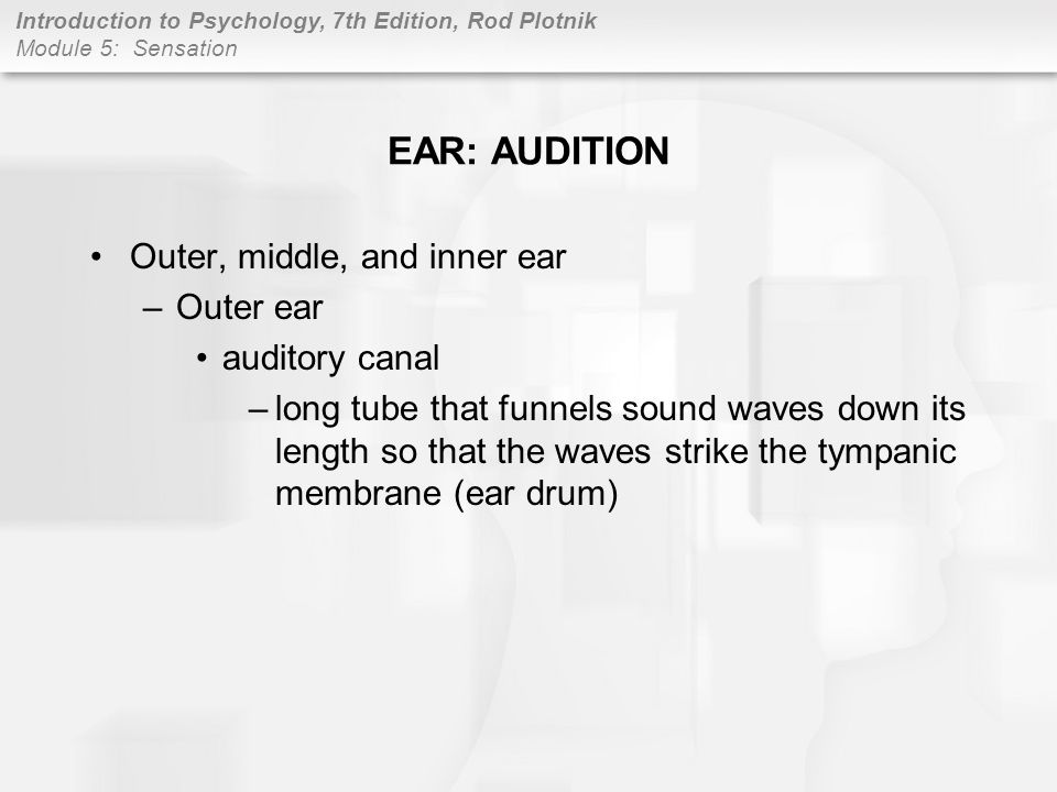 EAR: AUDITION Outer, middle, and inner ear Outer ear auditory canal