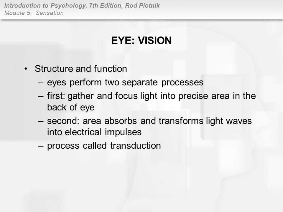 EYE: VISION Structure and function eyes perform two separate processes