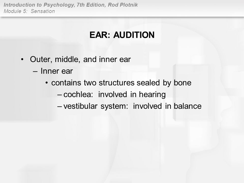 EAR: AUDITION Outer, middle, and inner ear Inner ear
