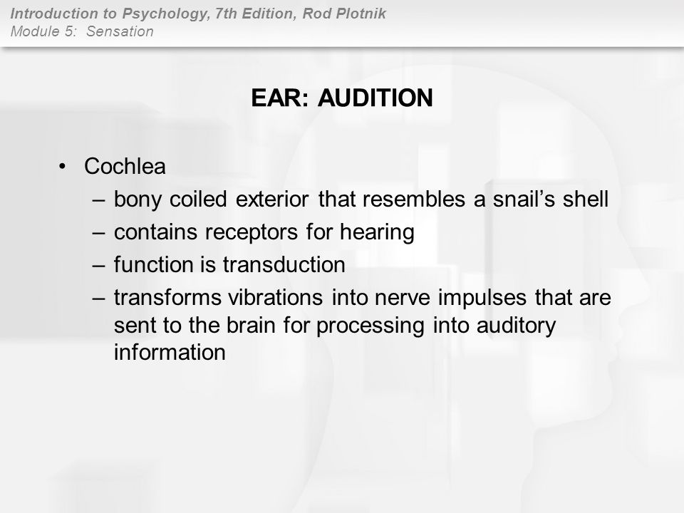EAR: AUDITION Cochlea. bony coiled exterior that resembles a snail's shell. contains receptors for hearing.