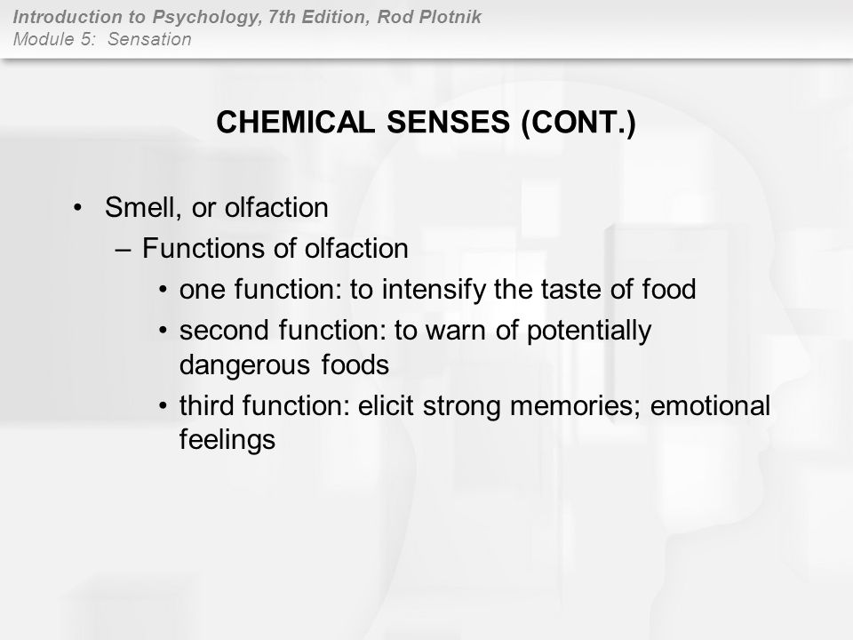 CHEMICAL SENSES (CONT.)