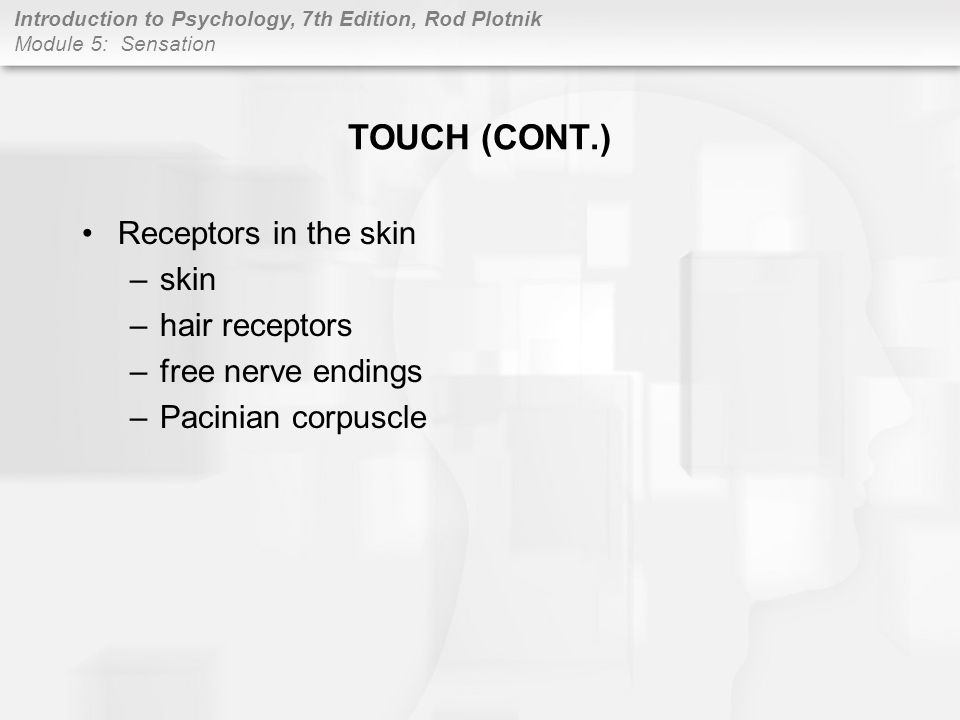 TOUCH (CONT.) Receptors in the skin skin hair receptors