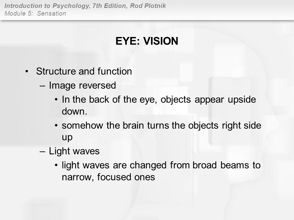 EYE: VISION Structure and function Image reversed
