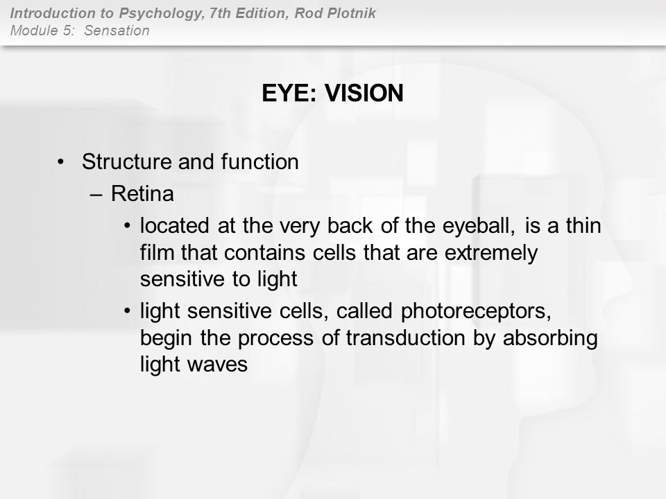 EYE: VISION Structure and function Retina