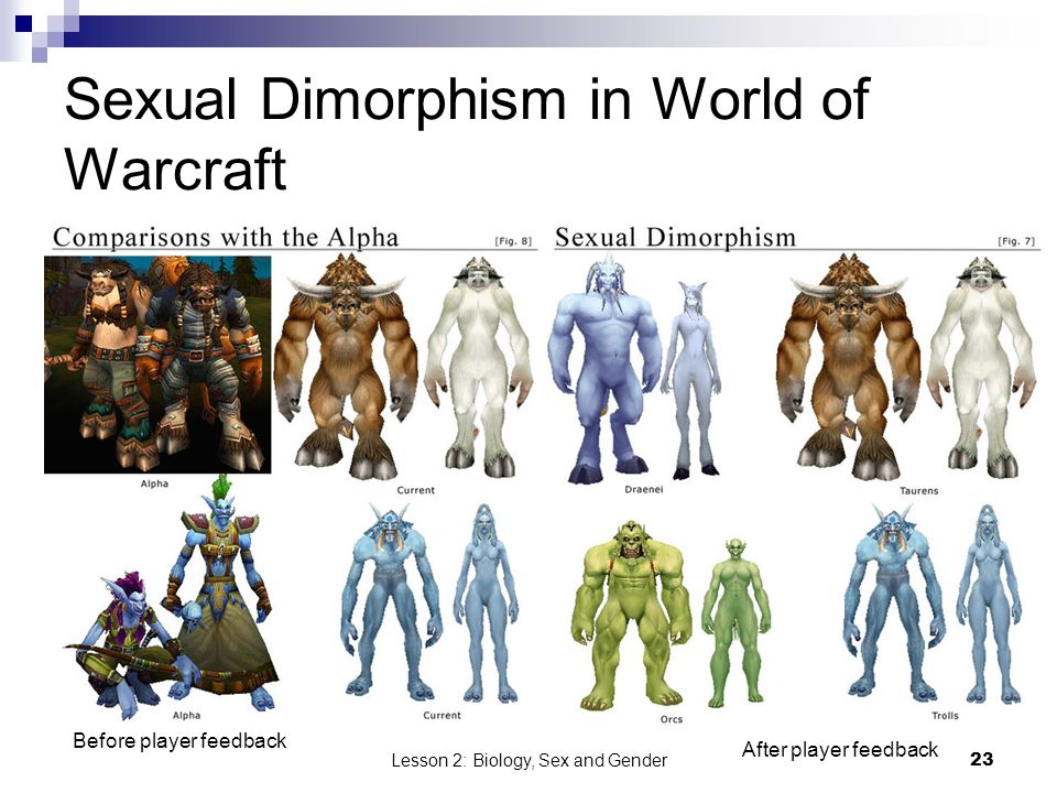 Sexual Dimorphism in World of Warcraft