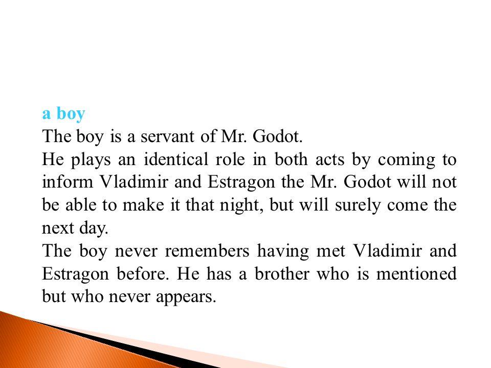 a boy The boy is a servant of Mr. Godot.