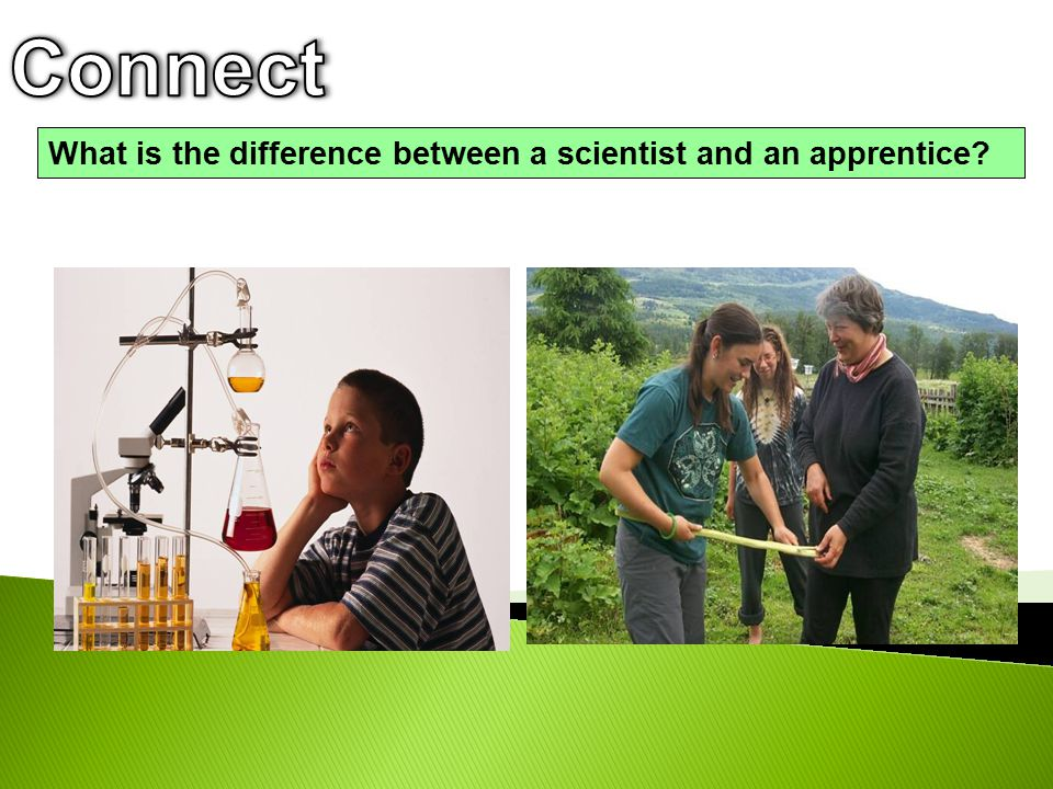 Connect What is the difference between a scientist and an apprentice