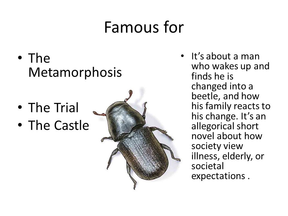 Famous for The Metamorphosis The Trial The Castle
