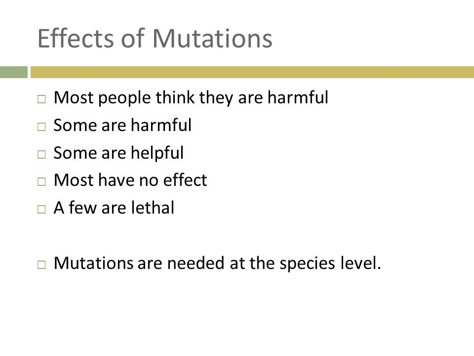Effects of Mutations Most people think they are harmful