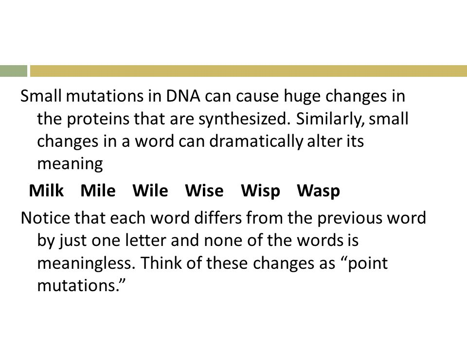 Small mutations in DNA can cause huge changes in the proteins that are synthesized.